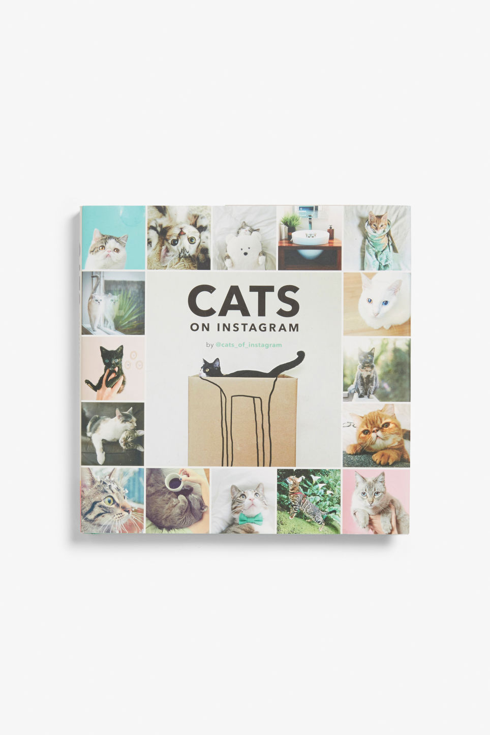 Front image of Monki cat book in white
